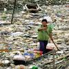 Les Sacs de plastique ; plus dévastateurs que jamais !