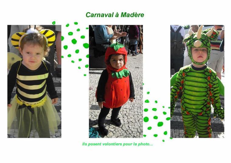 356   Carnaval à Madère
