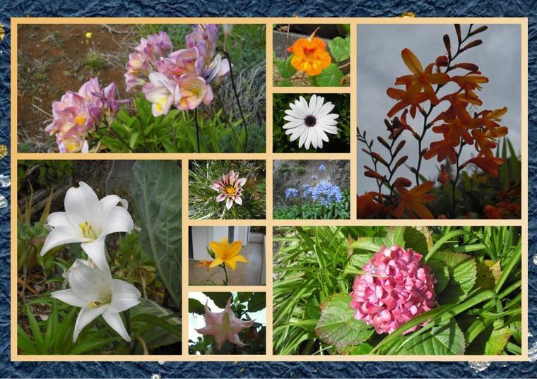368   Bouquet de fleurs