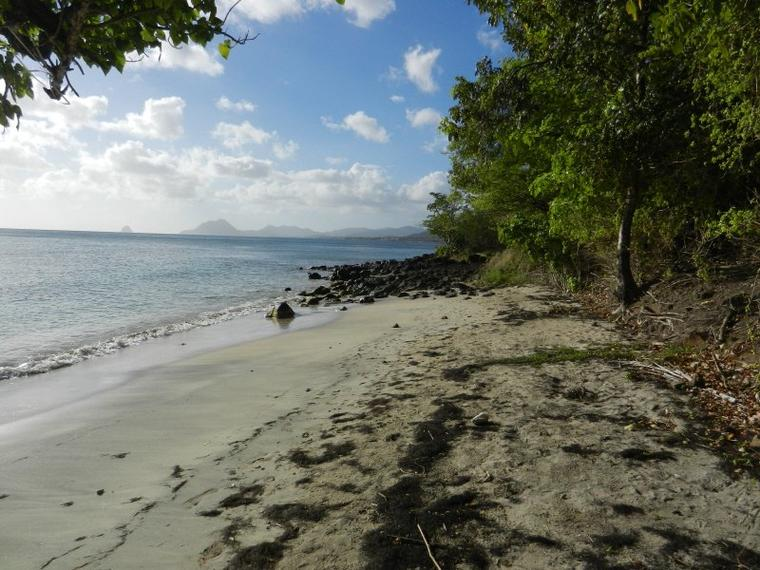 725  Martinique, pointe Borgnesse