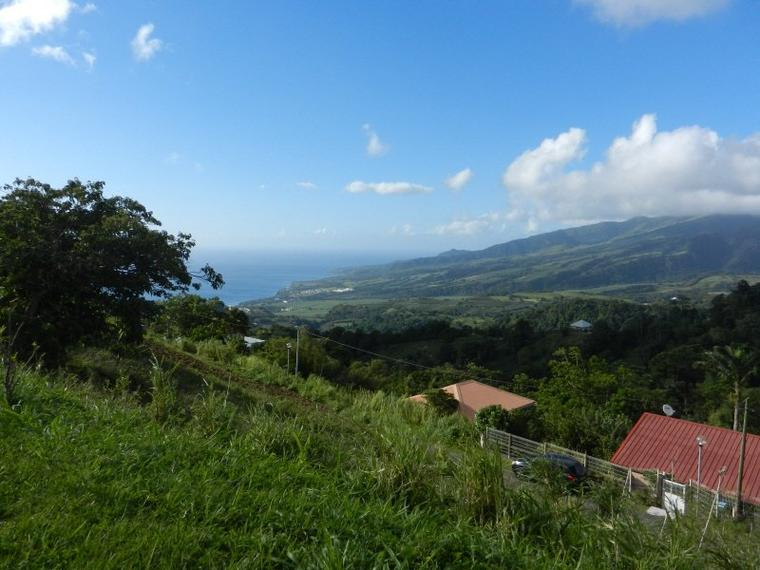 728   La Martinique