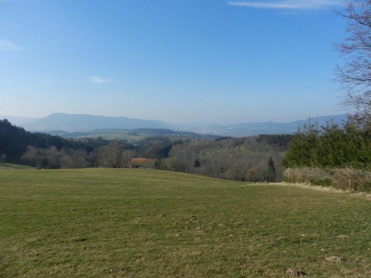 752   Printemps dans les Vosges