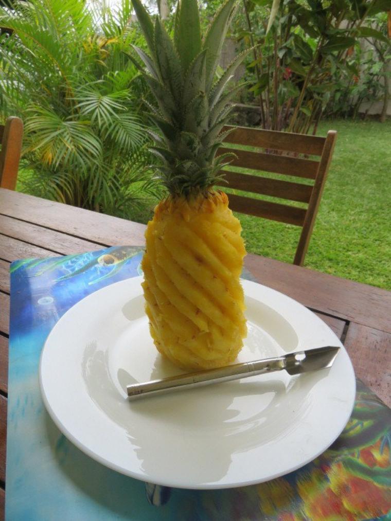 1207  Ananas...