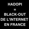 Hadopi adoptée