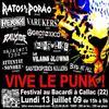Vive le punk