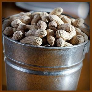 Beurre d'arachide, Beurre de cacahuètes  : Un produit aux valeurs nutritives , que les américains aiment et consomment beaucoup, mais moins apprécié en France à cause de ses valeurs caloriques .....