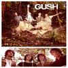 Parlons musique : Parlons Gush !