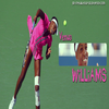 61- Venus WILLIAMS