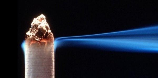 Comme des mégots brûlant dans l'ombre (2008)