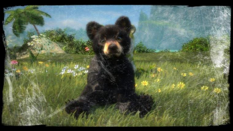 Avis: Kinectmals Now With Bears!