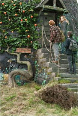● De nouvelles photos d'Harry Potter sont apparues pour commencer l'année 2012 en beauté
