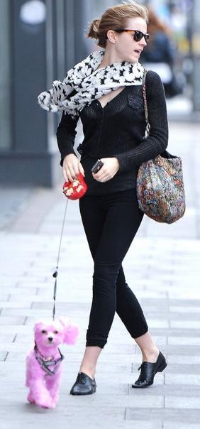 . ● 22/06/12 Emma a été vue avec sa meilleure amie Sophie Sumner se promenant à Londres en compagnie de Darcy le chien de Sophie, teint en rose pour aider la recherche sur le cancer..