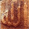 Ruche d'abeille