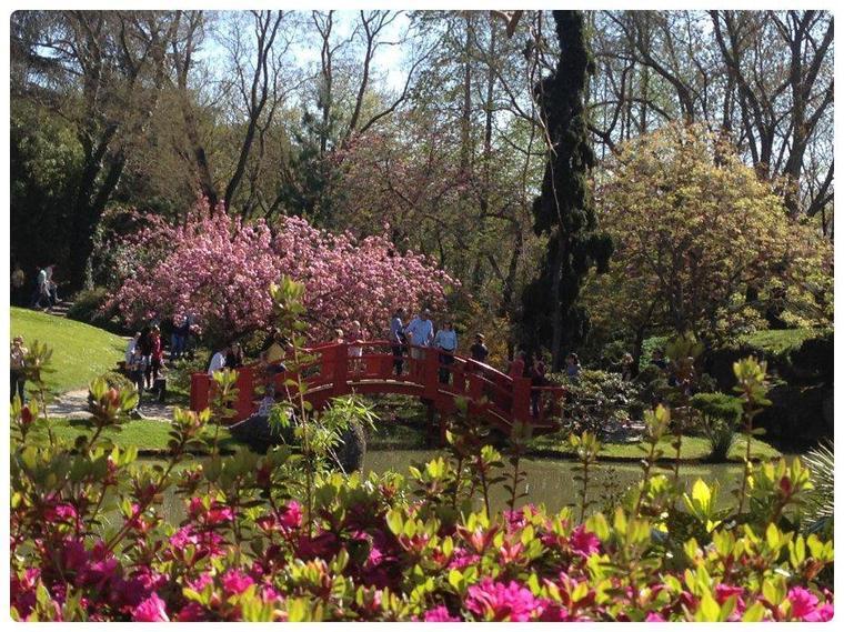 Mon petit voyage au jardin japonais de toulouse k pop k dramas - Petit nain de jardin toulouse ...