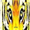 ℒa femme vengeresse agit toujours comme une Tigresse.