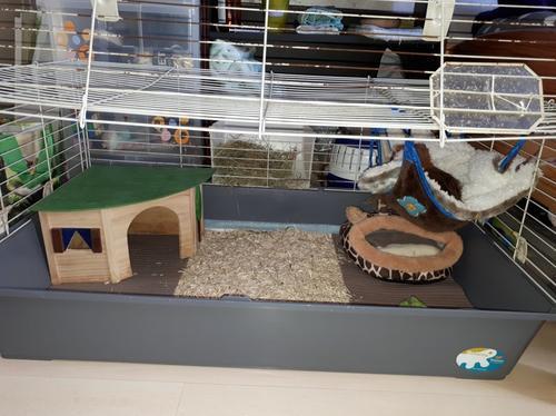 Leur cage
