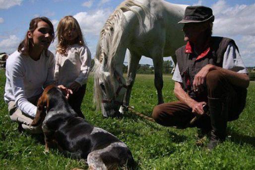 Une fillette égarée retrouvée par des chevaux !