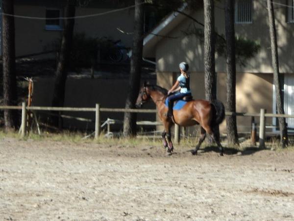 Cours d'équitation à Lacanau - Semaine 2