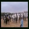LA FETE DE SIDI BRAHIM waada 2010-photosالوعدة