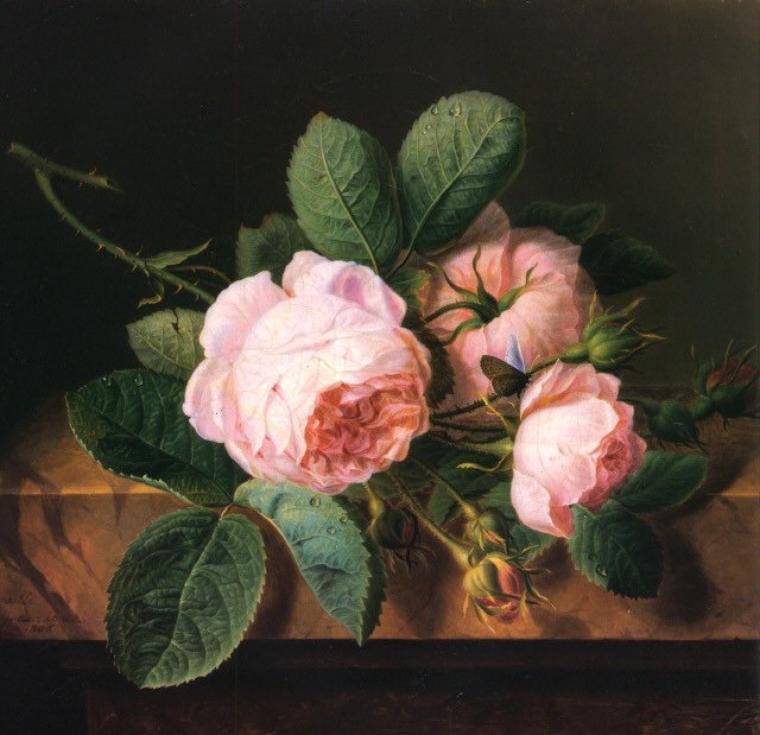 Fleurs de saison   :  rose botanique   /  capucine   (comestible)