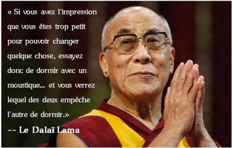 La citation du Dalaï Lama ....