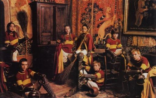 L'équipe de Quidditch Gryffondor