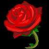 la fleur rouge sais pour demande le marage