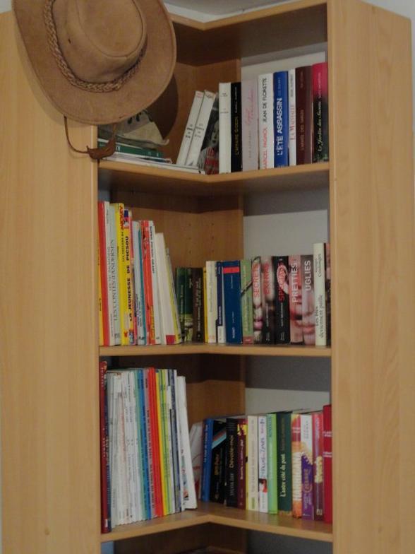 Un roman est comme un archet, la caisse du violon qui rend les sons, c'est l'âme du lecteur.