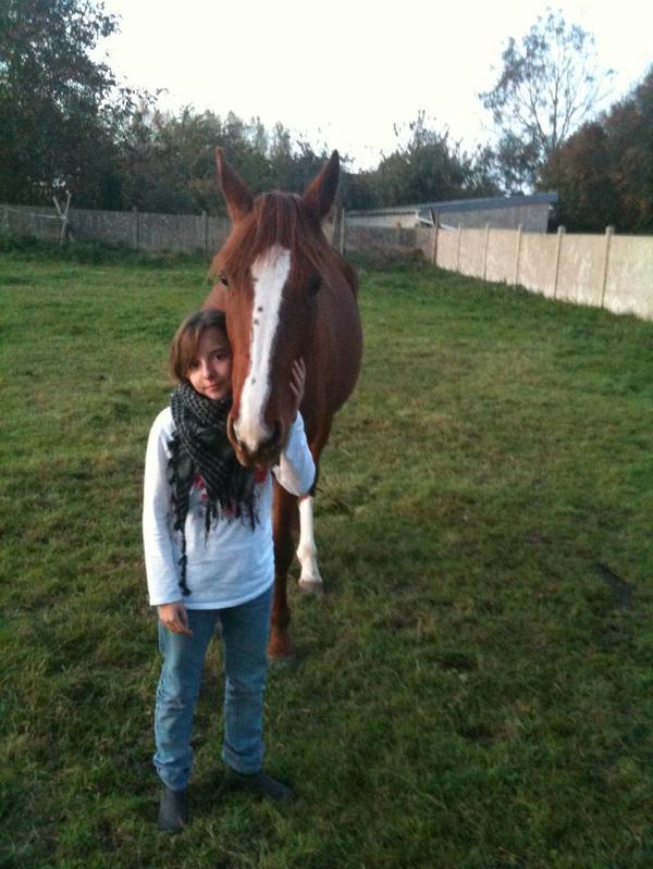 « On a vu des chevaux et des cavaliers parfaitement d'accord : c'étaient assez souvent des chevaux de bois. »