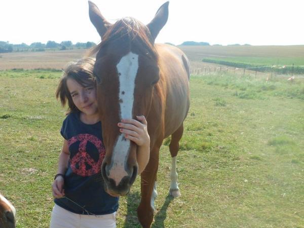 « On prétend que le cheval est une animal de luxe. Il ne s'habille pourtant qu'avec des bretelles. »
