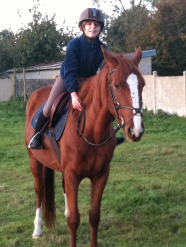 « Il n'y a pas de secret aussi intimes que ceux d'un cavalier et de son cheval. »