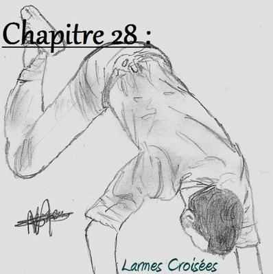 Chapitre 28