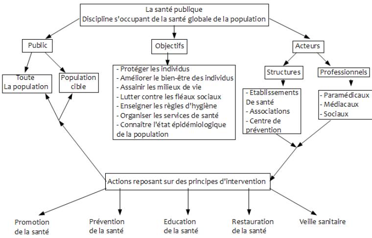 Fiche 3 : Santé publique