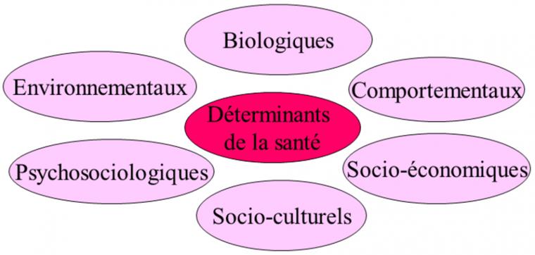 Chapitre 3 : Etat de santé et de bien-être social : une articulation de déterminants (1)