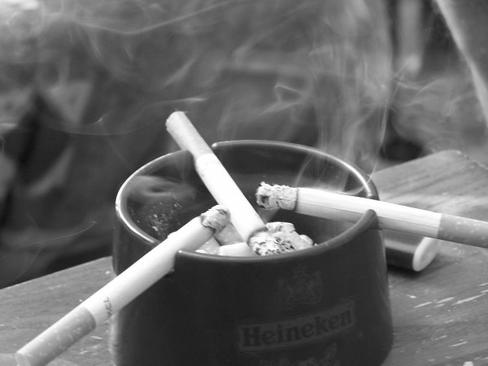 Comme disait Bob Marley, ne marchons pas sur l'herbe, fumons là ...