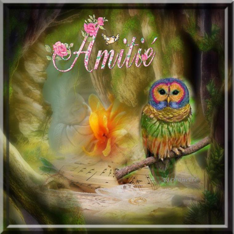 ♥✿ღѼღ✿ UN AGRABLE  WEE-KEND LES AMI(E)S QUIL VOUS SOIE AGREABLE♥✿ღѼღ✿