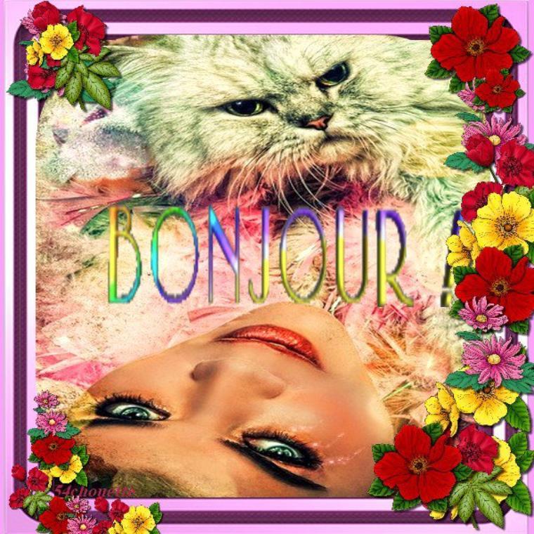<>-○●◊۞◊●○-<> BONJOUR  LES AMI(E)S ET BONNE SEMAINE <>-○●◊۞◊●○-<>