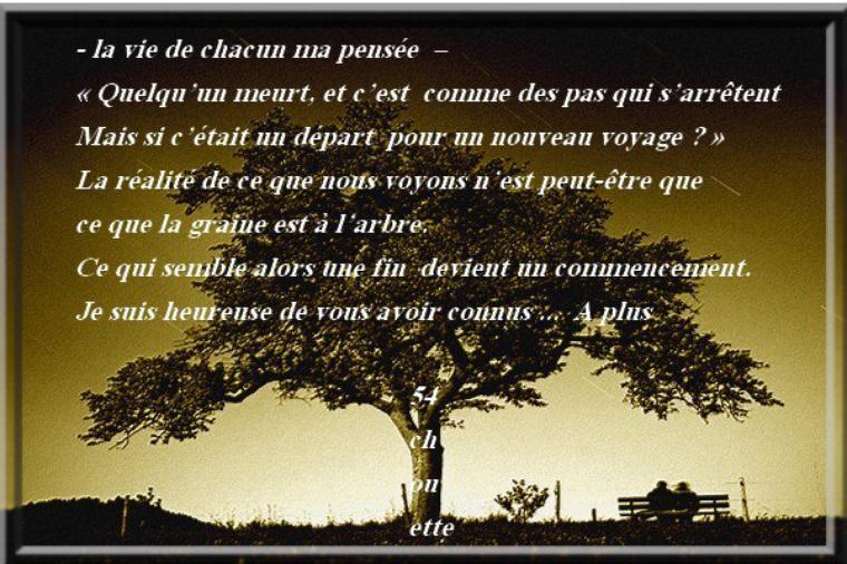 ♥✿ღღ✿♥♥✿ღ  BONJOUR LES AMI(E)S , MERCI DE VOS  VISITES    ღ✿♥♥✿ღღ✿♥