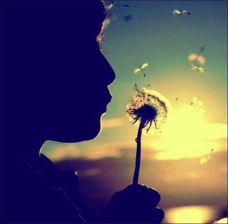 • Ne fait pas quelqu'un de ta vie, lorsque tu es qu'une option dans la sienne ♥