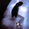 .  Fiche d'identité de Michael Jackson .