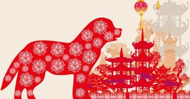 L'année chinoise : le chien de terre