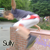 suly...