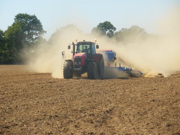 semis de colza 2012