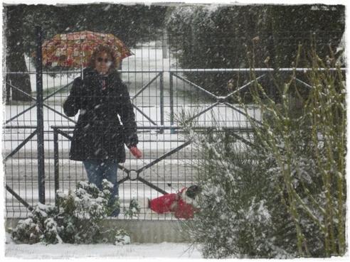 Promenade de DIEGO encore sous la neige ~ lundi 11 mars 2013