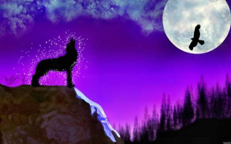 en vous souhaitant une belle nuit remplies de beaux rêves mes amies