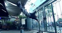 Film : Thailandais Bangkok Adrenaline  90 minutes [Comédie et Art Martiaux]