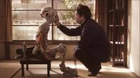 Film : Japonais Hinokio 111 minutes[Drame et Science-Fiction]