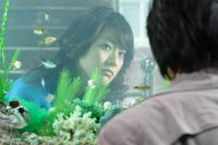 Film : Coréen Love In Magic 106 minutes [Romance et Comédie]