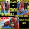 Stages Techniques de Sambo les 12 et 13 Février 2008