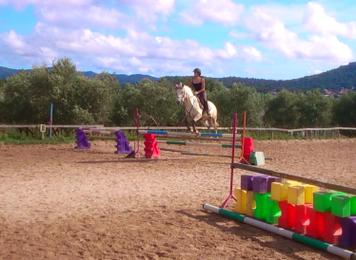 """La Prochaine fois qu'on te dis : """"Ce n'est qu'un cheval'' souris et dis toi qu'il ne peuvent pas comprendre.."""